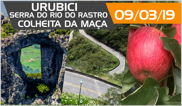 passeio-por-urubici-colheita-da-maçã